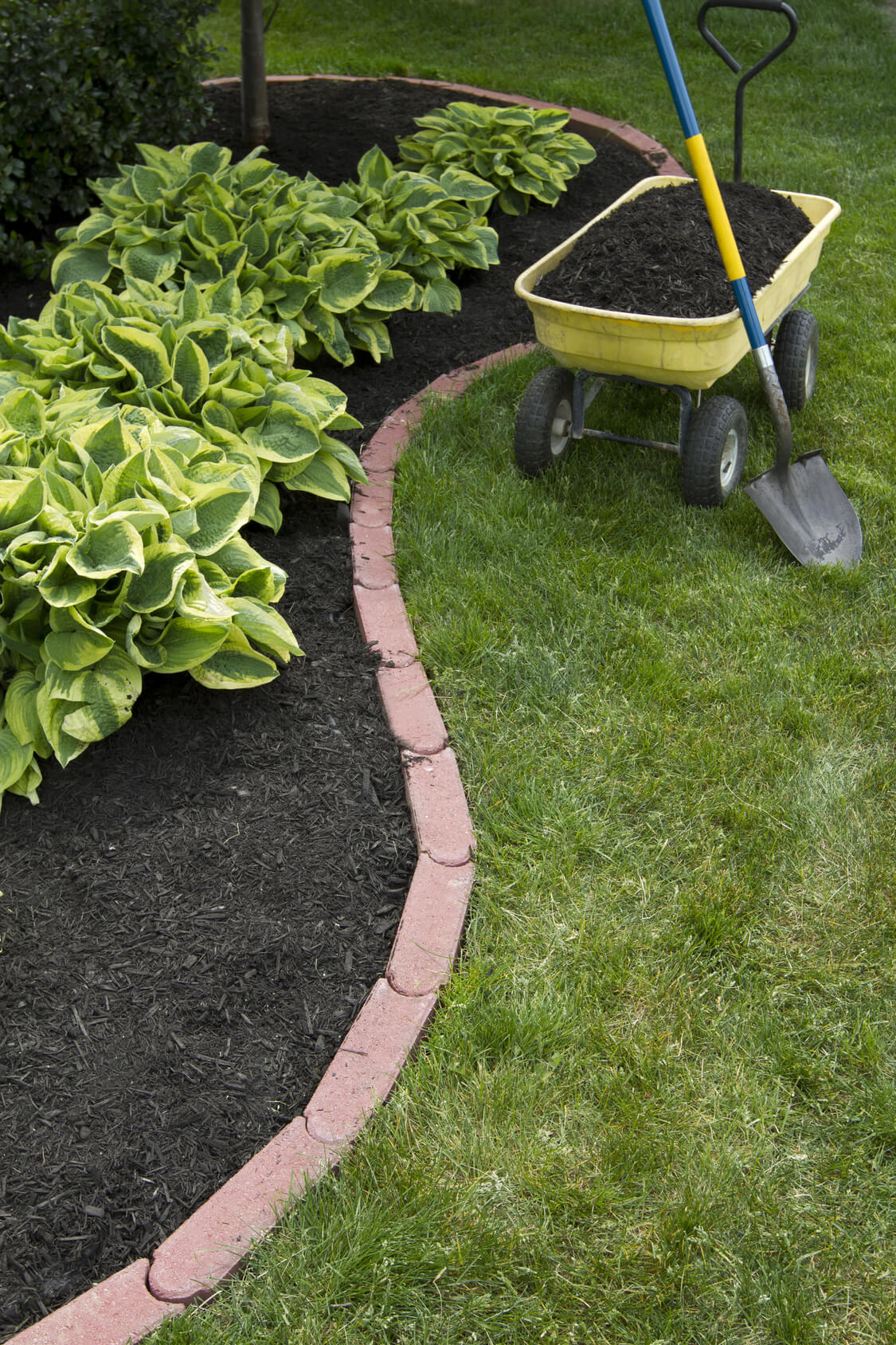 25 Best Lawn Edging Ideas And Designs For 2021
