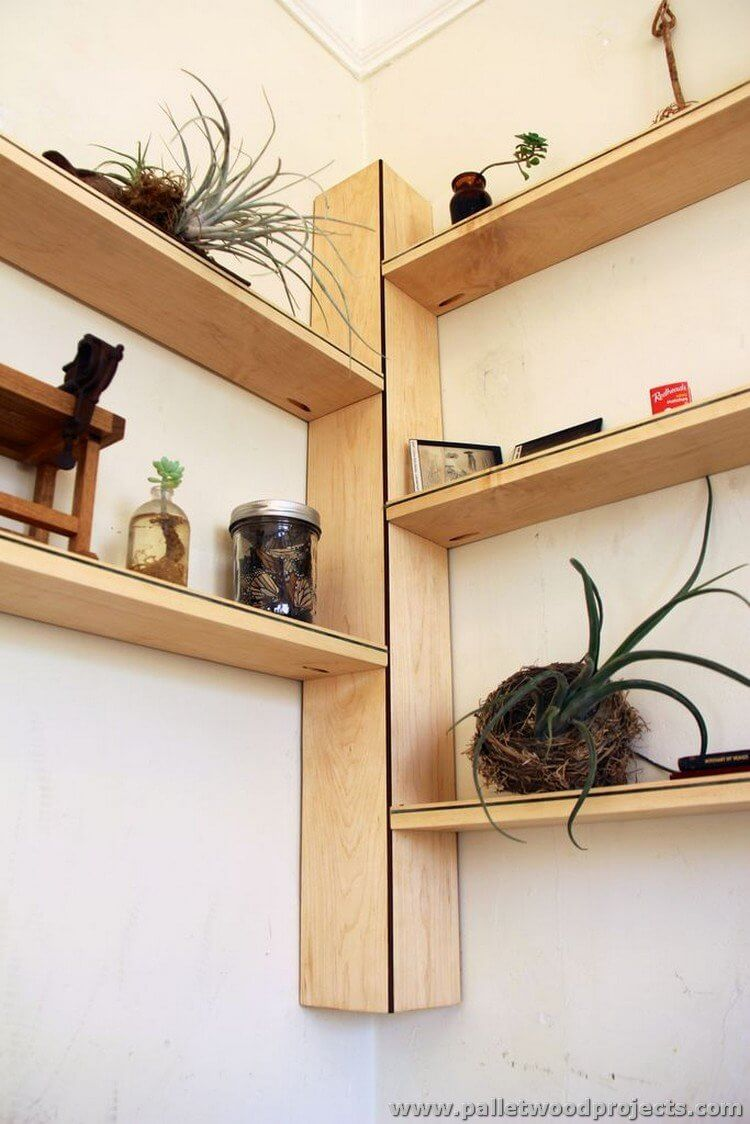 Cool New Wall Shelves for Plants