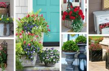 Porch Planter Designs