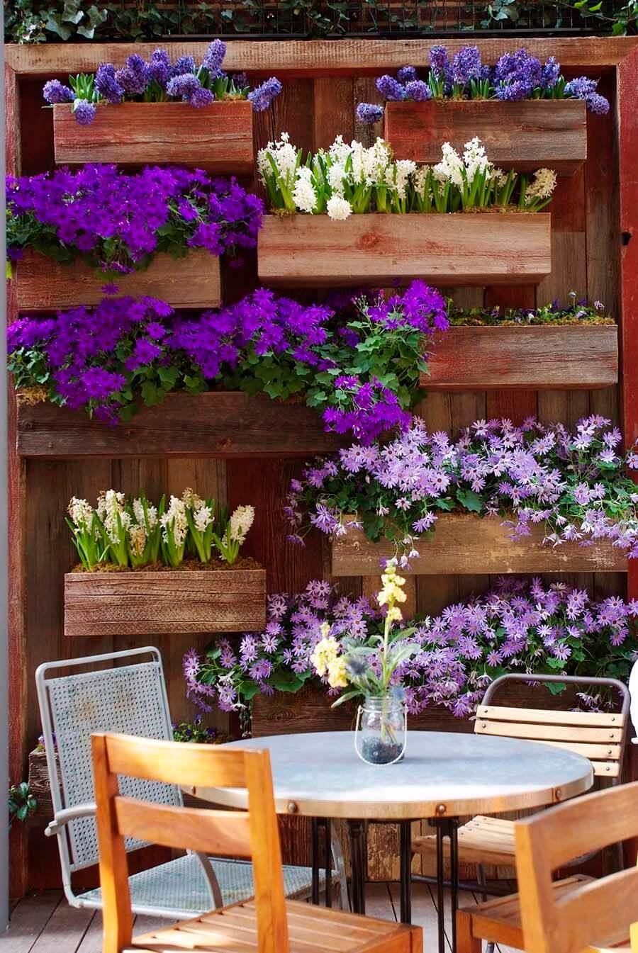 Purple and White Blooms with Wall Boxes