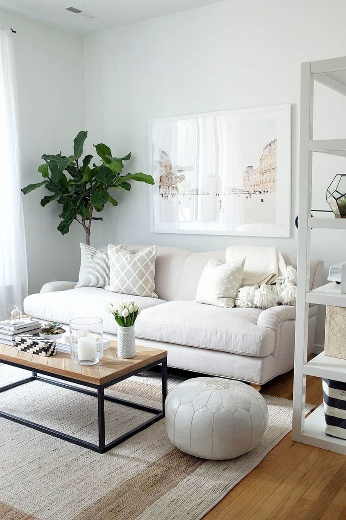 Serene Small Living Room Decor Idea
