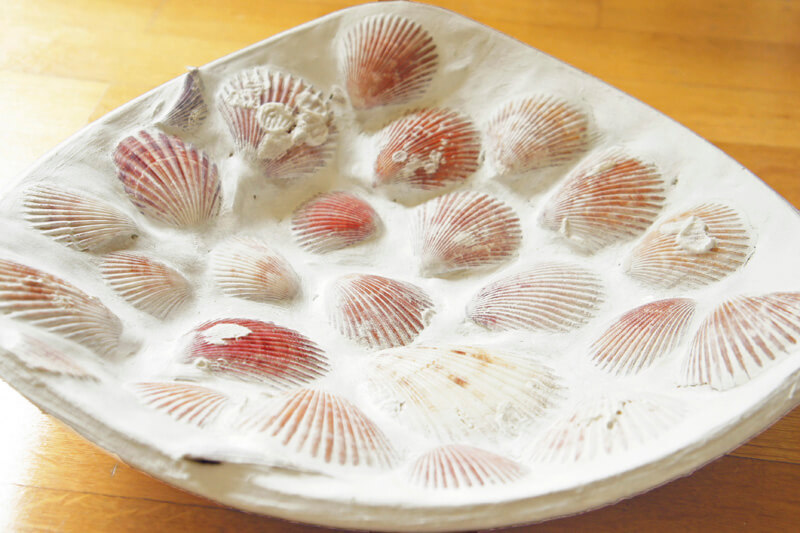 Beautiful Scallop Shells in a Bowl