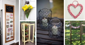 Chicken Wire DIY Project Ideas