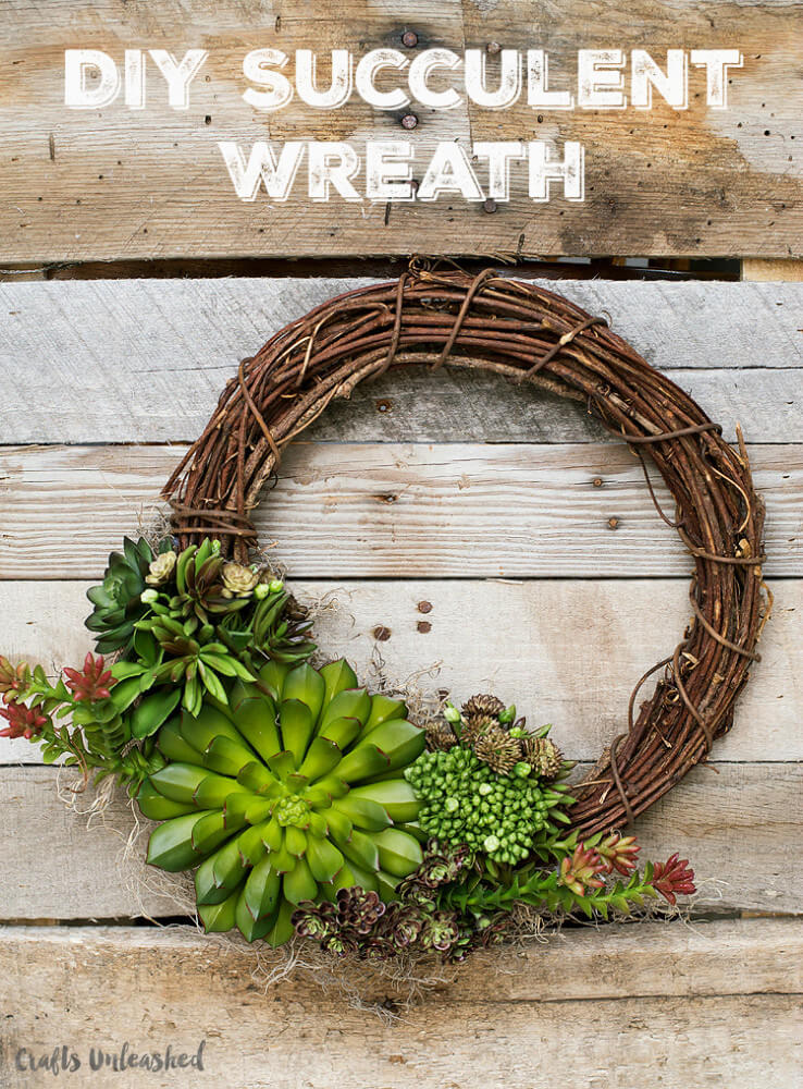 Beautiful Growing Succulents on a Wreath
