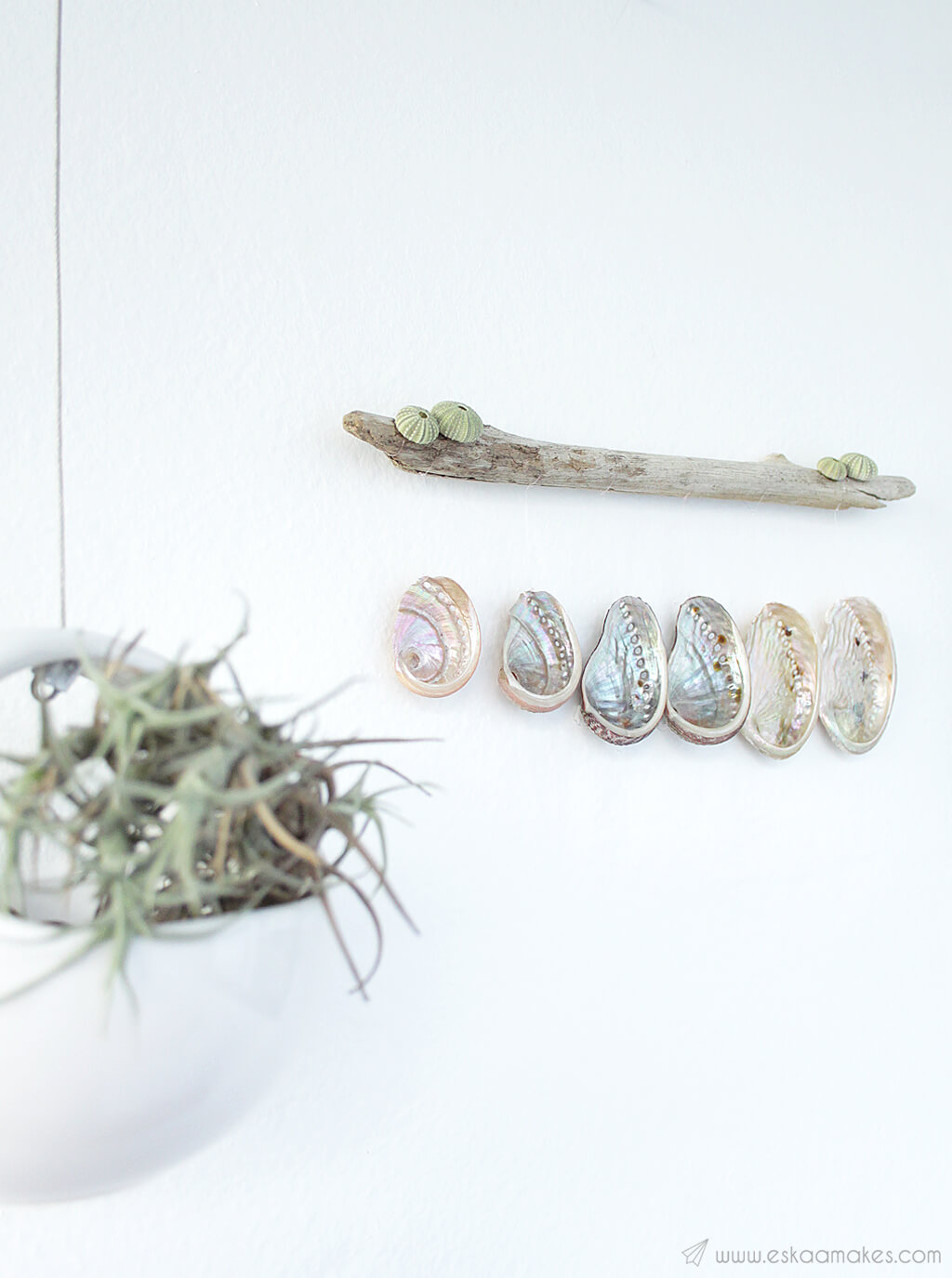 Hanging Shell and Driftwood Wall Art