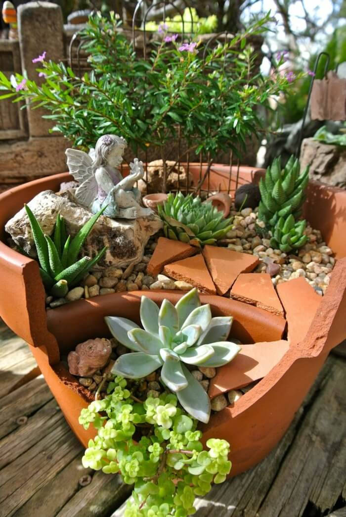 Fairy Garden with Lovely Succulents