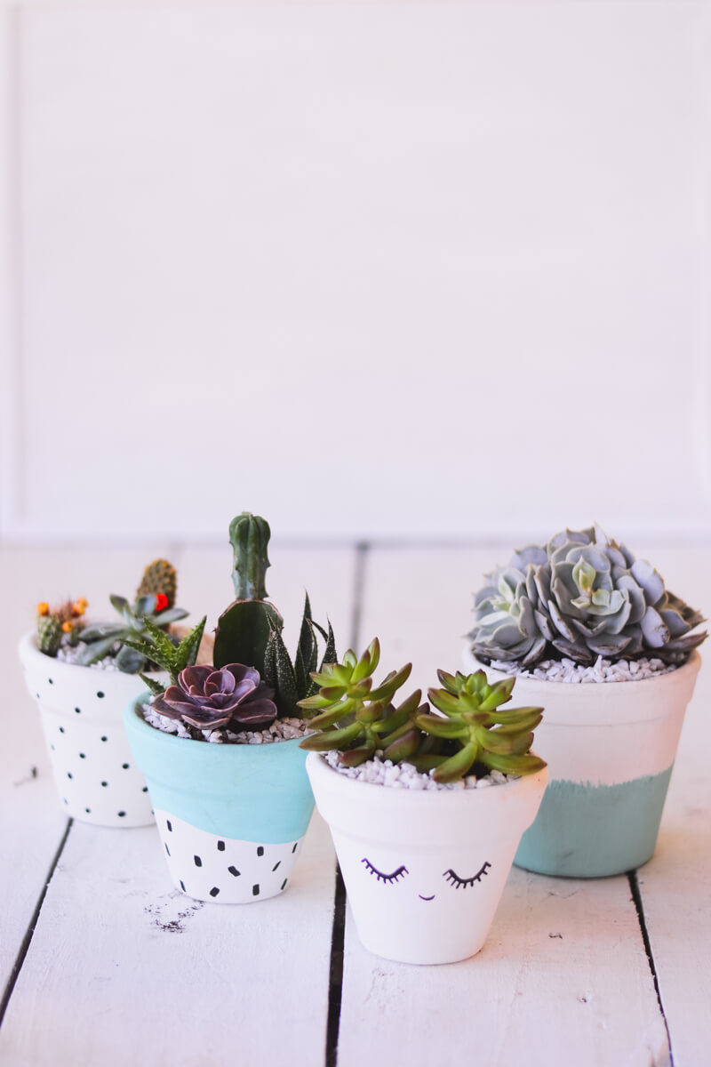 Sweet Painted Terra Cotta Pots with Succulents