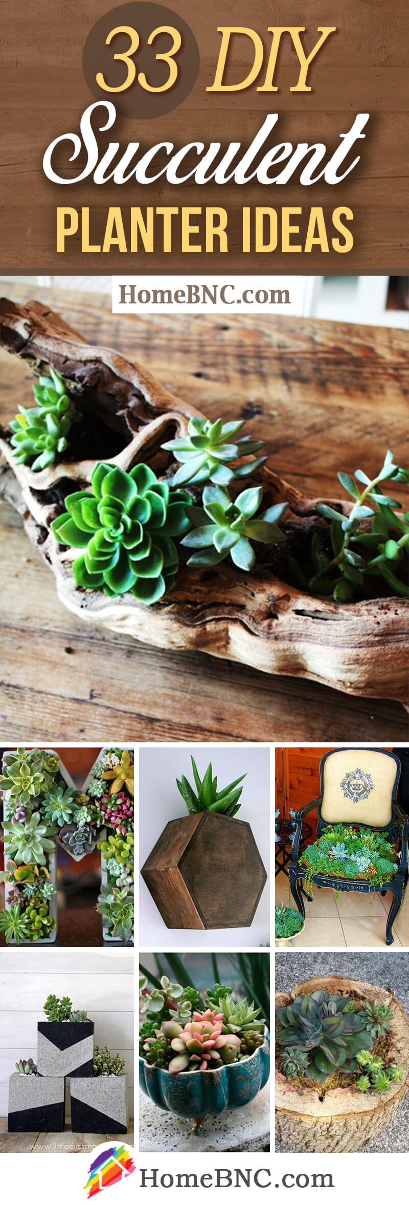 DIY Indoor And Outdoor Succulent Planter Ideas