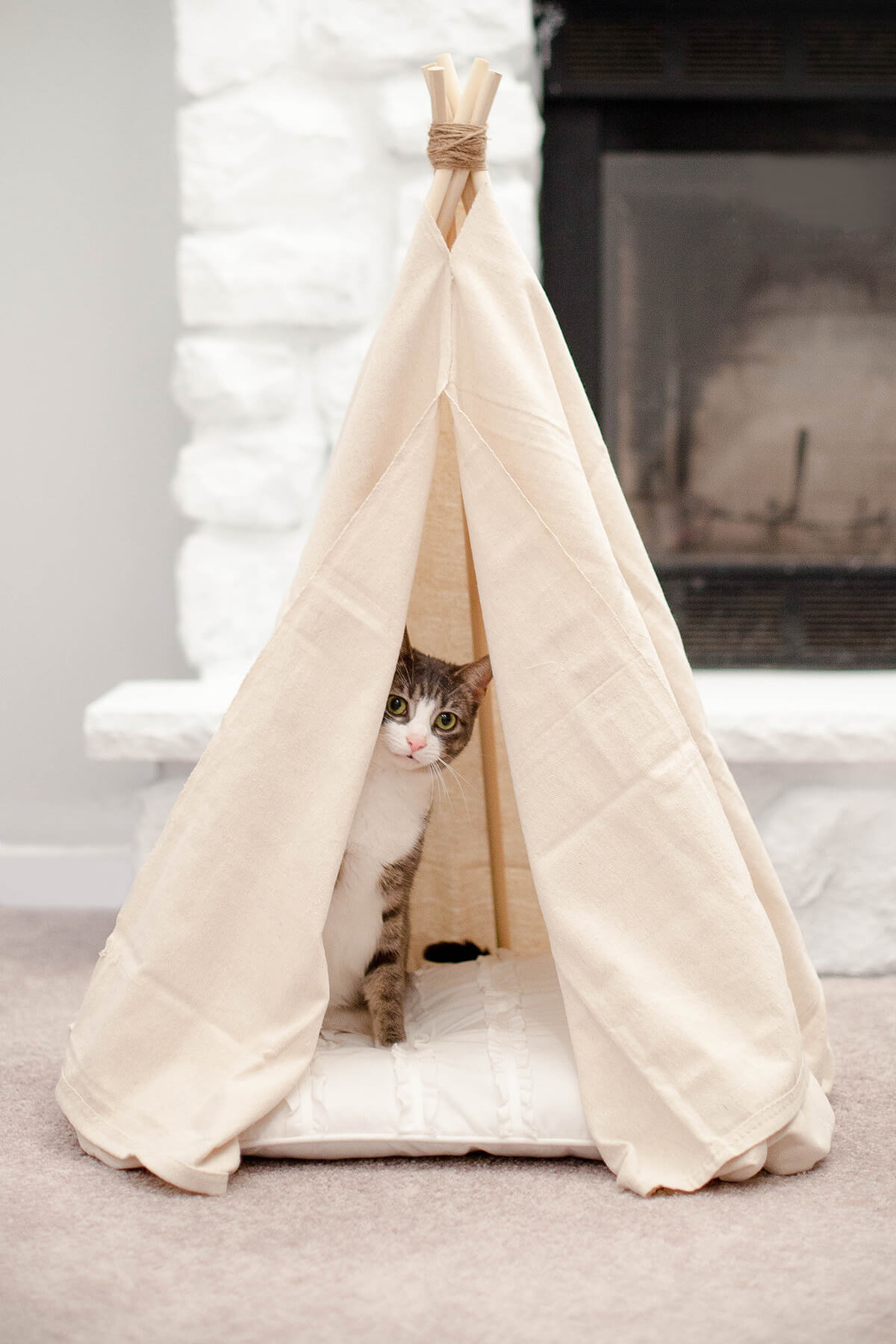 DIY Pet Projects Cat Teepee
