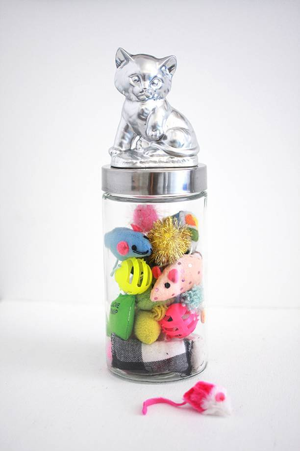 DIY Pet Toy Upcycled Jar