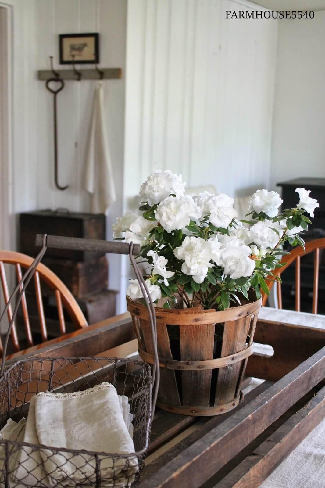 Farm Containers and Beautiful White Flowers