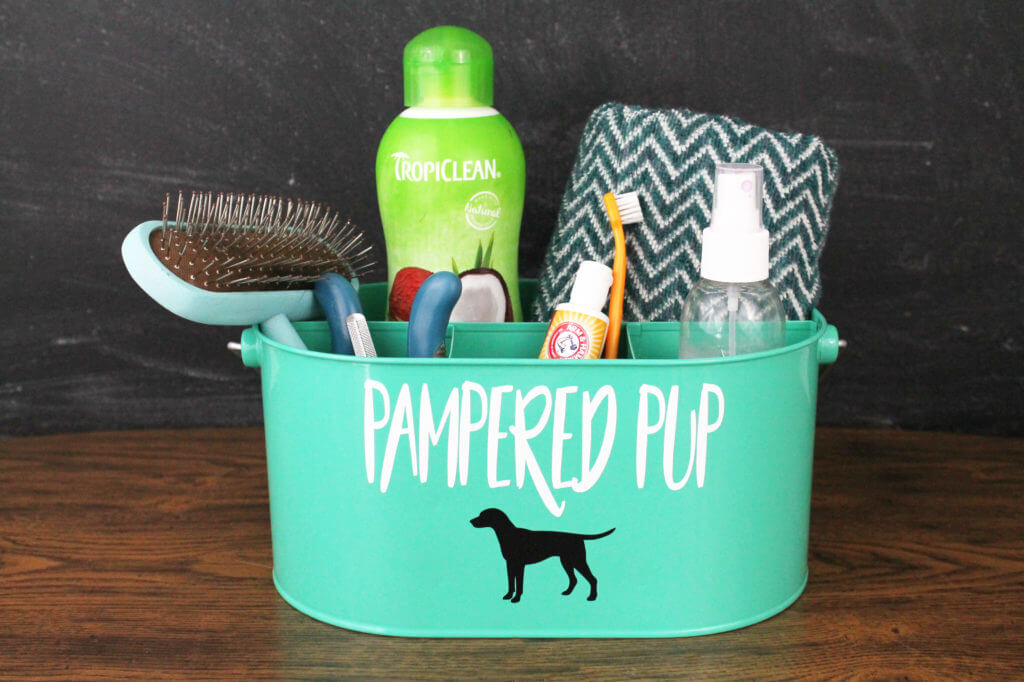 Grooming Kit for the Pampered Pup