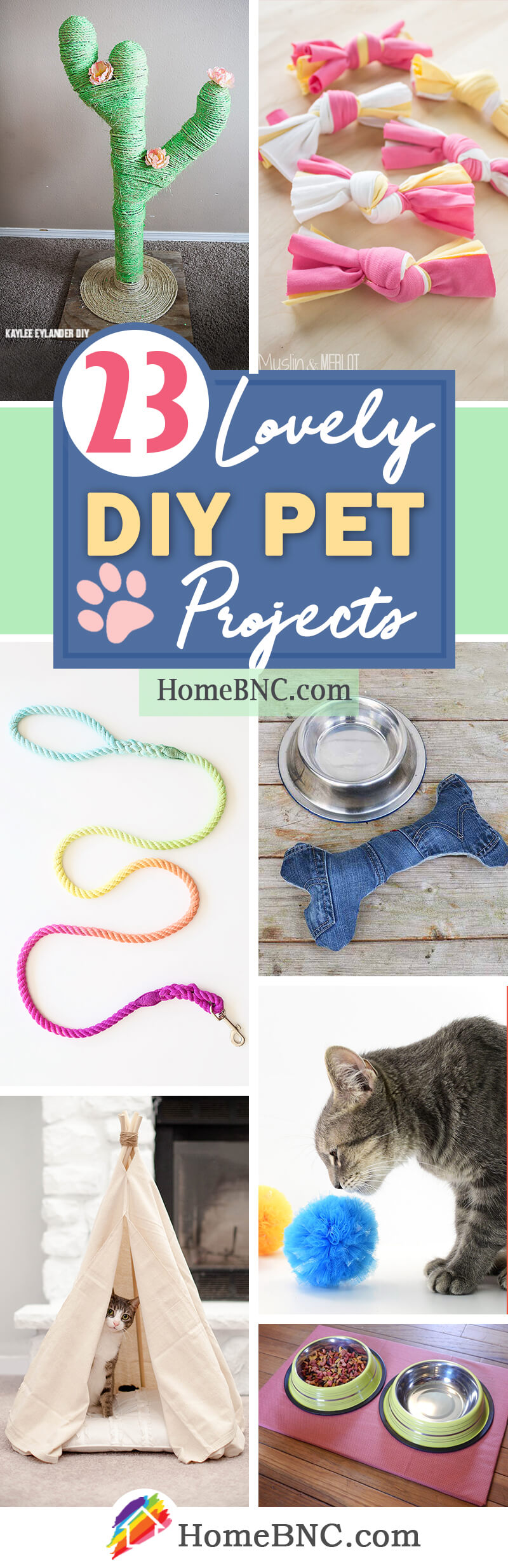DIY Pet Project Ideas