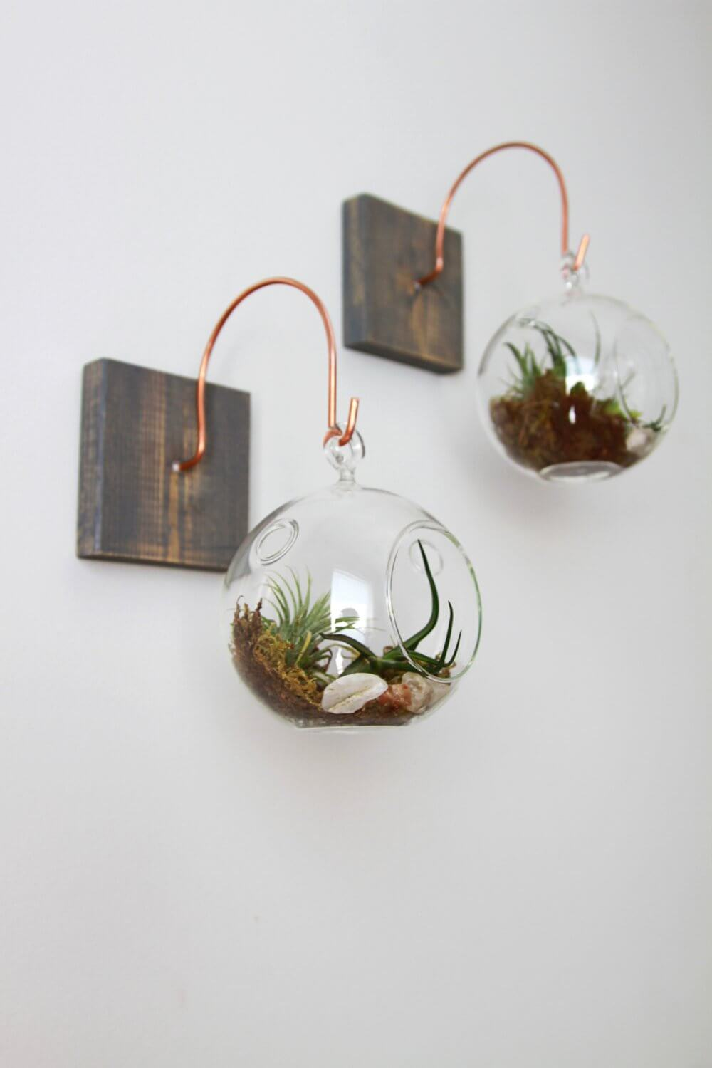 Adorable and Affordable Miniature Bubble Planters