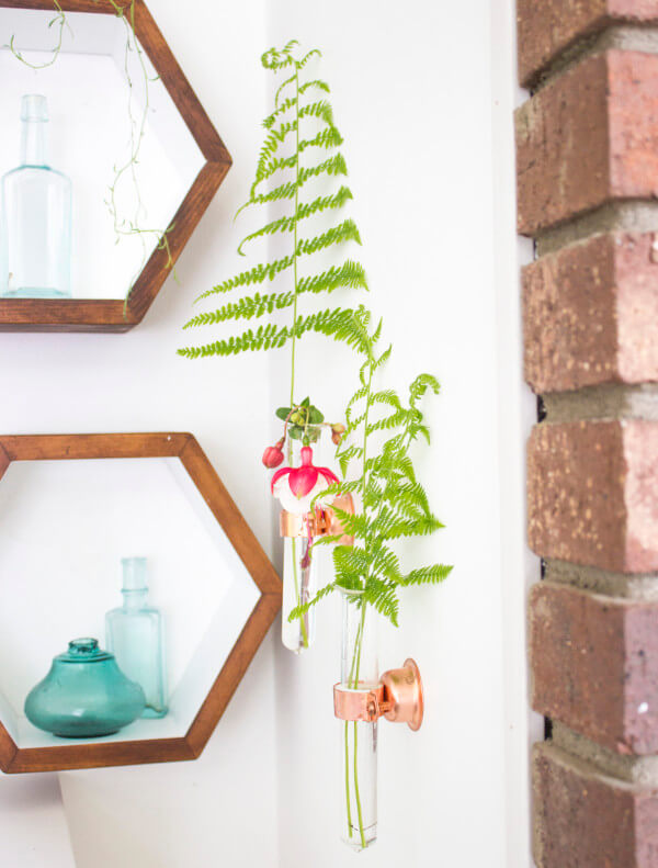 Transparent Tube Planters for Effortless Cool