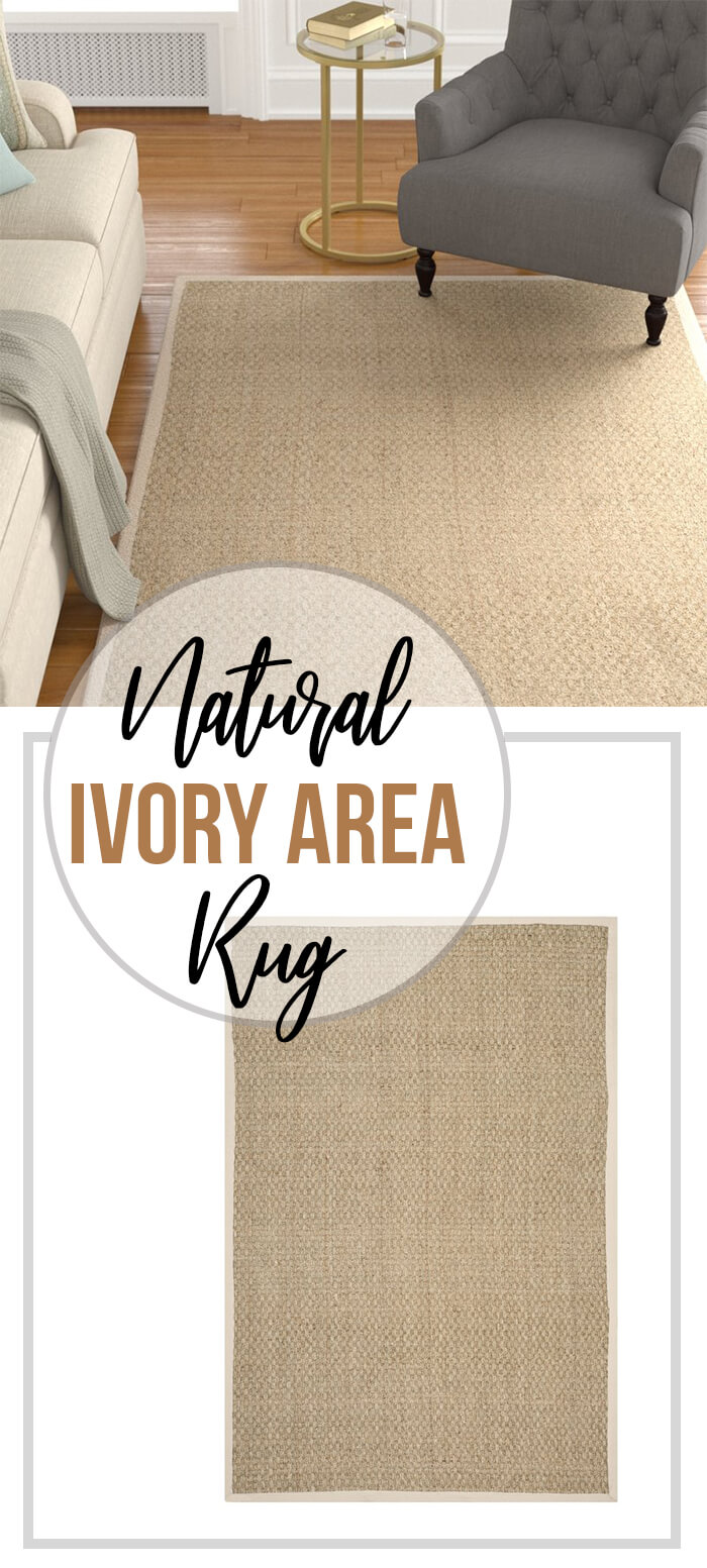 Pleasantly Chic & Versatile Natural Ivory Area Rug