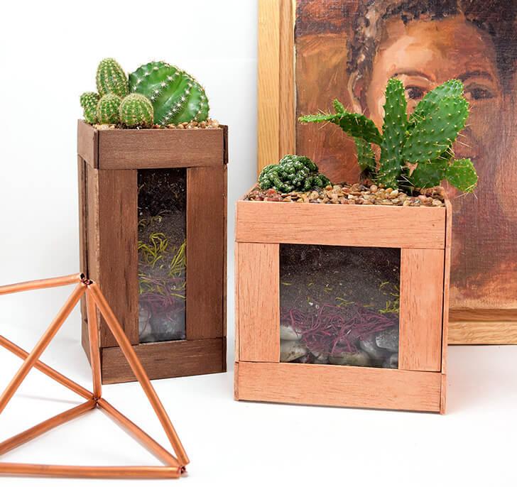 A Beautiful Succulent Arrangement in a Box