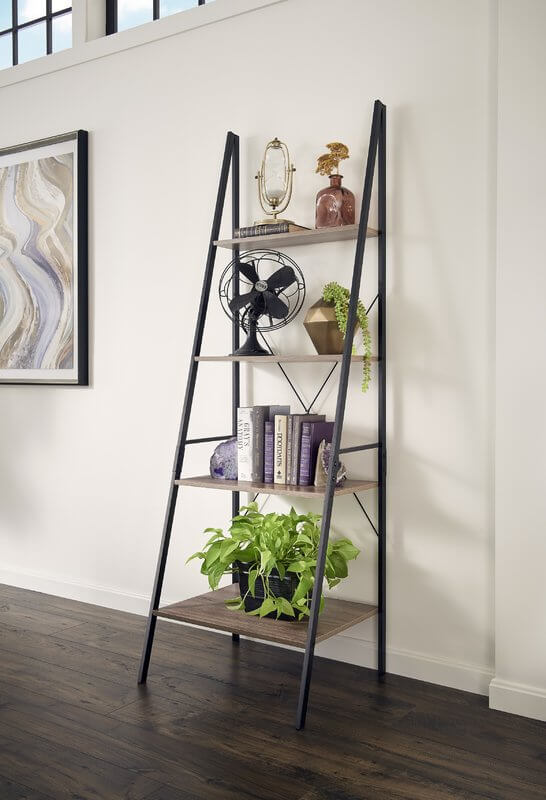 Make Your Library Its own Library Ladder