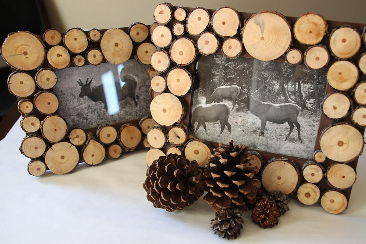 Woodsy Tree Ring Picture Frame