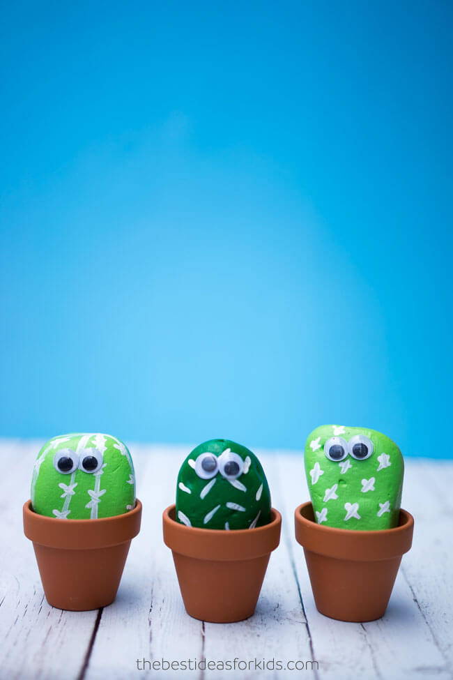 Anybody Can Grow Rock Cacti