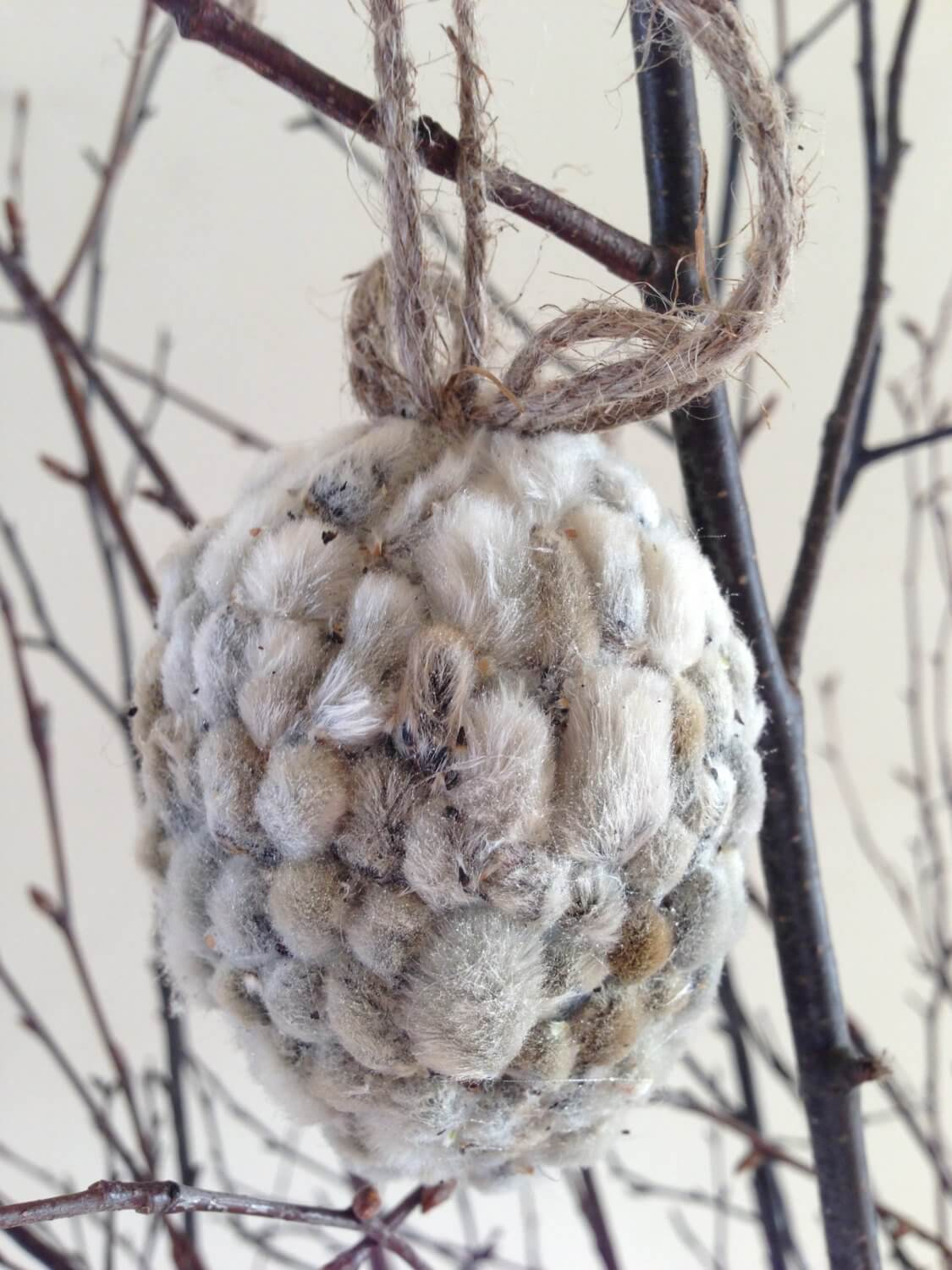 Rustic Catkin Hanging Easter Eggs
