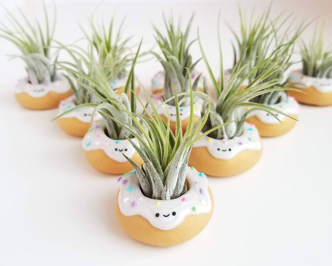 """Donut"" Miss These Adorable Planters"