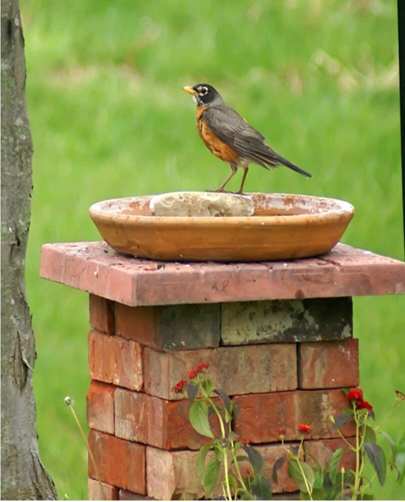 Stacked Brick Beautiful Bird Bath