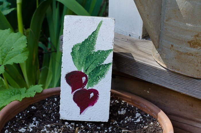 Customized Hand-Painted Garden Markers