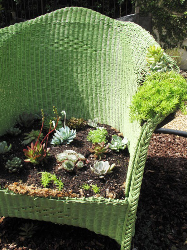 A Succulent Seat Fit for Two