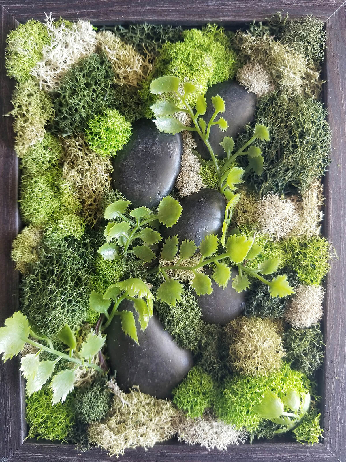 Stone and Moss Living Nature Box