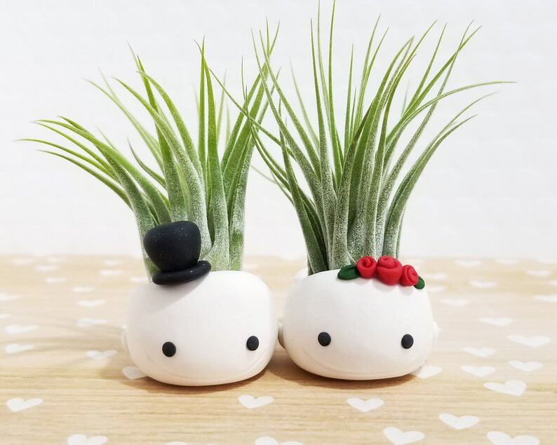 Mr. and Mrs. Whale Planters