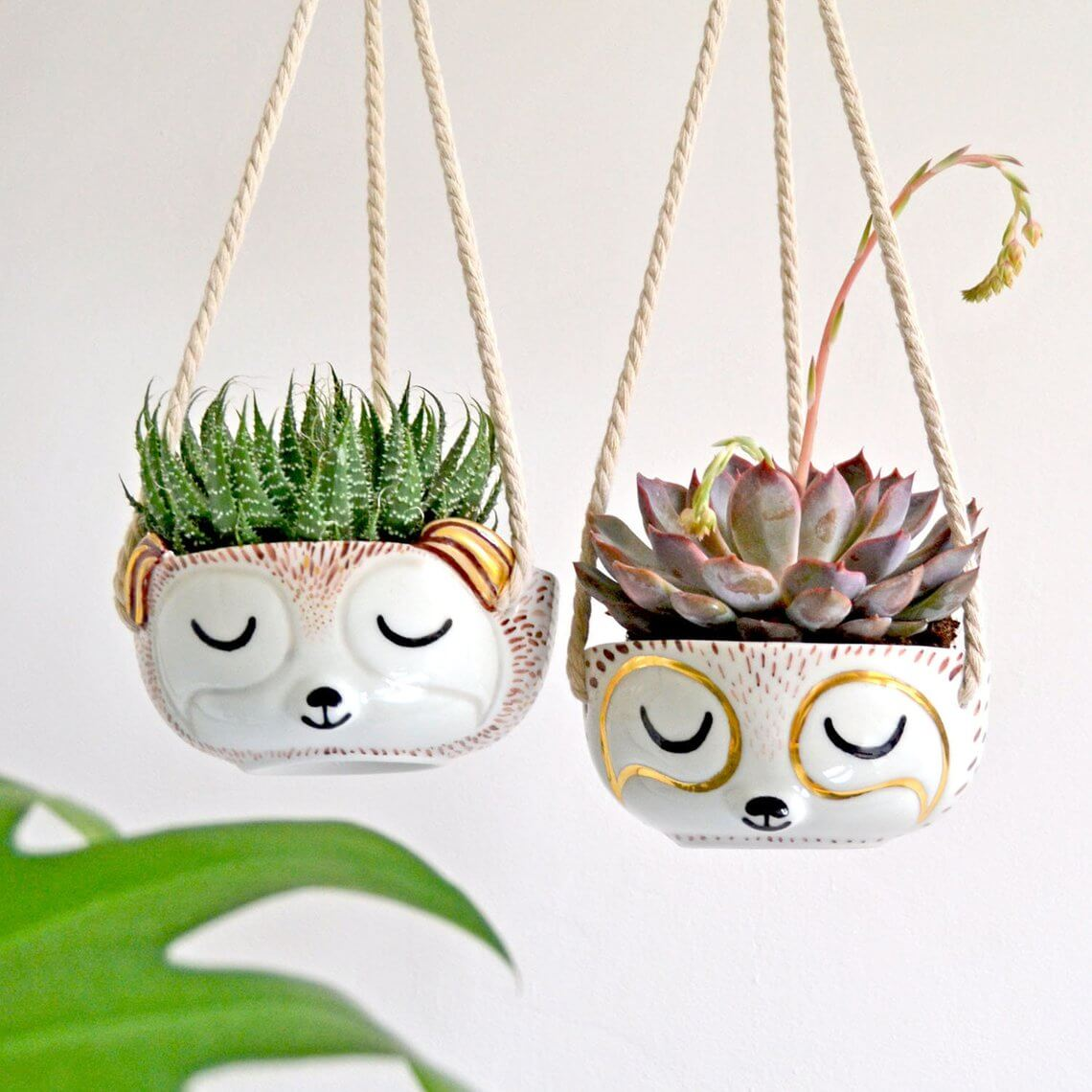 Sleepy Sloth Hanging Planter