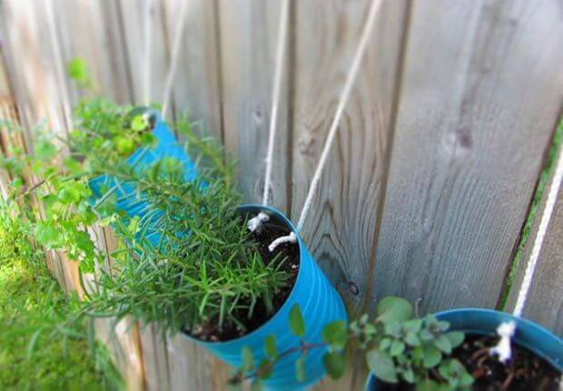 Herb Garden with Upcycled Tin Cans