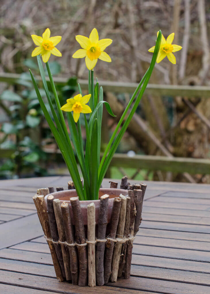 Wrap Your Flower Pots with Natural Elements