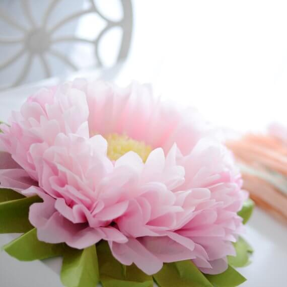 Large and Luscious Pink Peonies