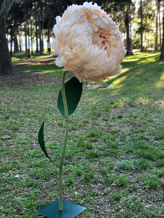 Truly Giant Paper Peony Blossom