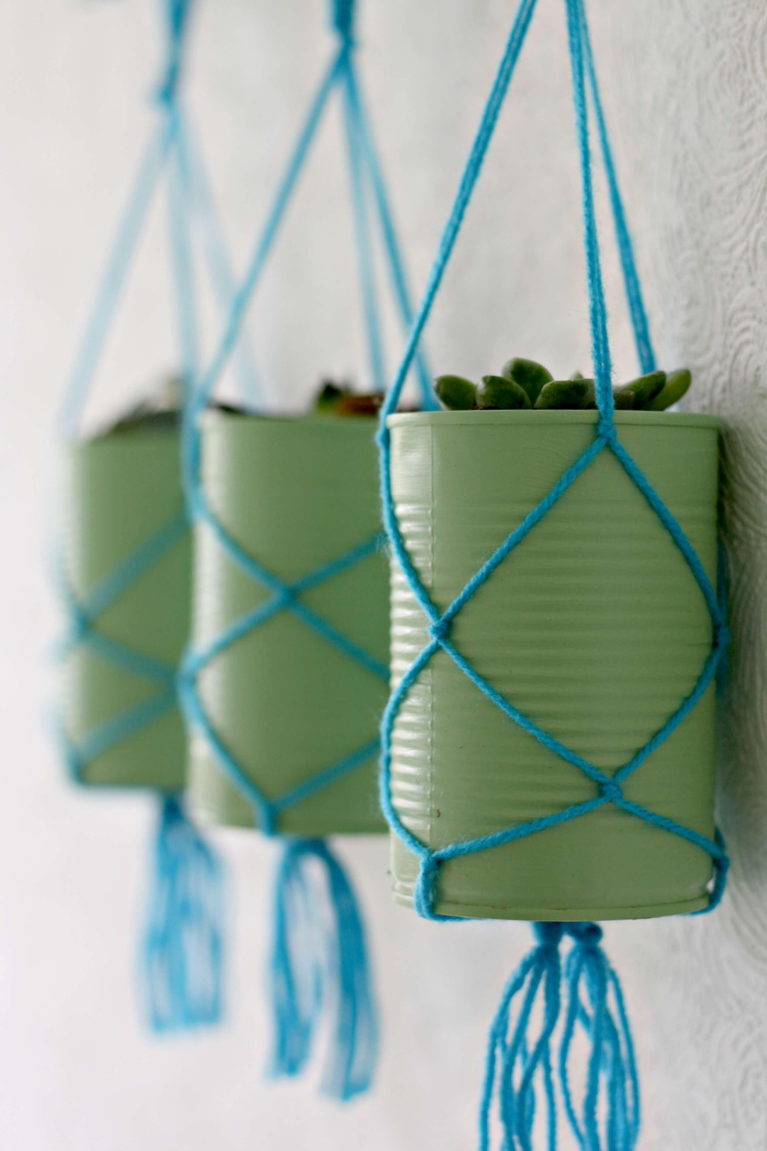 Springtime Colorful Rustic Hanging Planters