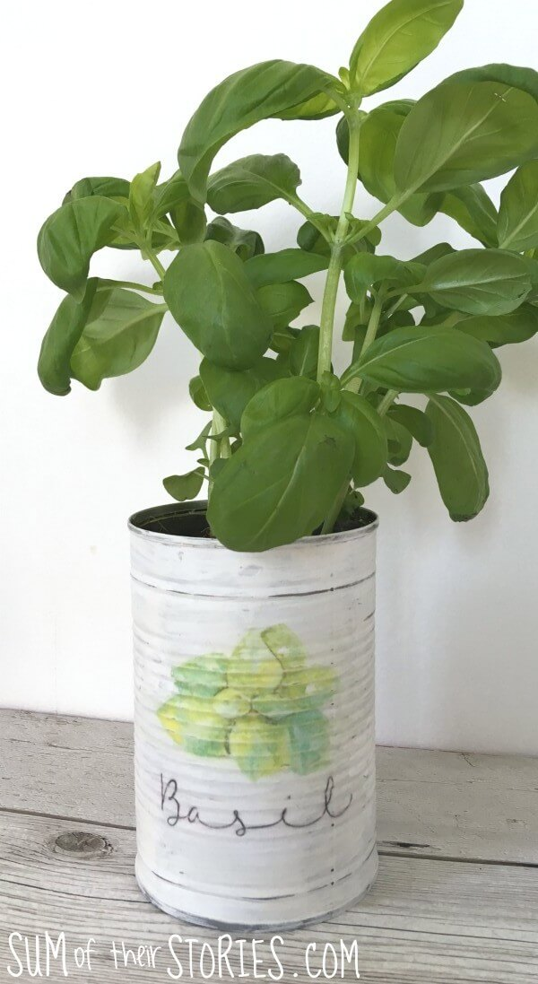 Practical Labeled Painted Herb Planters