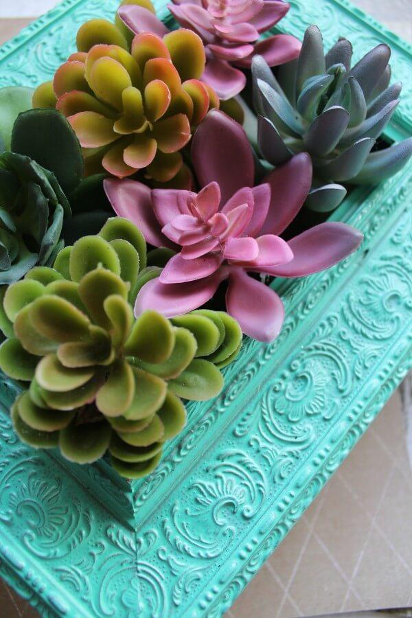 A Beautifully Framed Succulent Garden