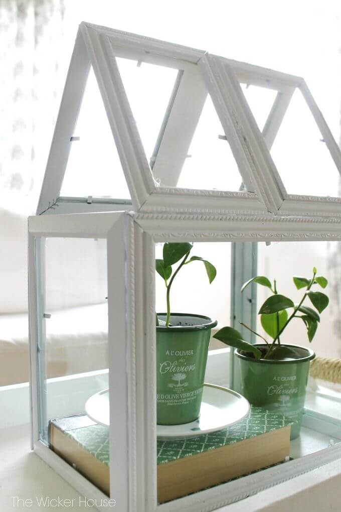 Greenhouse Terrarium with Assorted Picture Frames