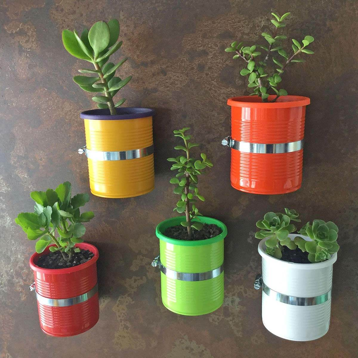 Decorative Magnetic Self-Watering Planter