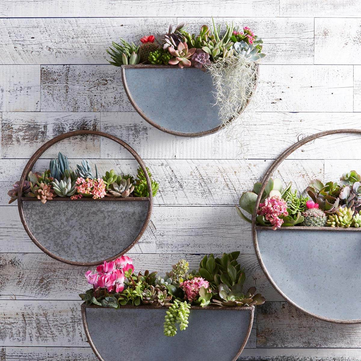 Half Circle Galvanized Metal Wall Planter