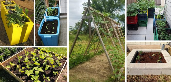 13 Best Diy Raised Garden Bed Ideas And, How To Make Raised Garden Bed Ideas