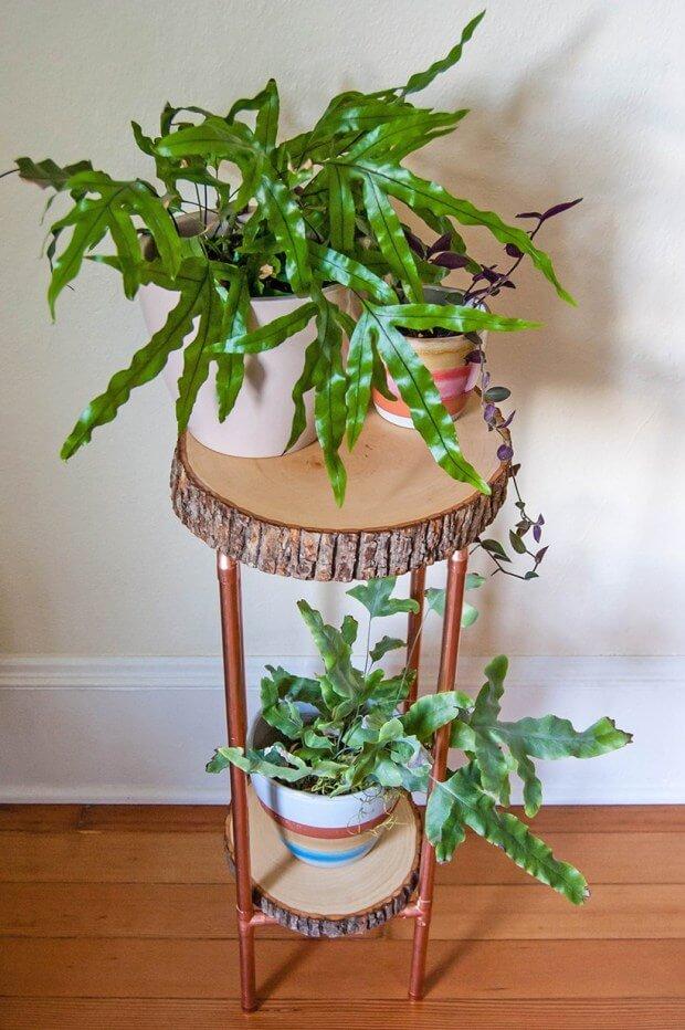 Natural Tree Trunk Table Shelf
