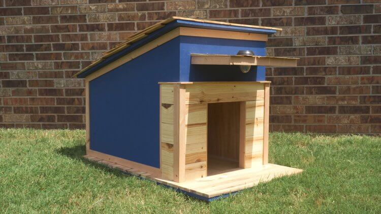 Dark Blue Dog House with a Porch Light