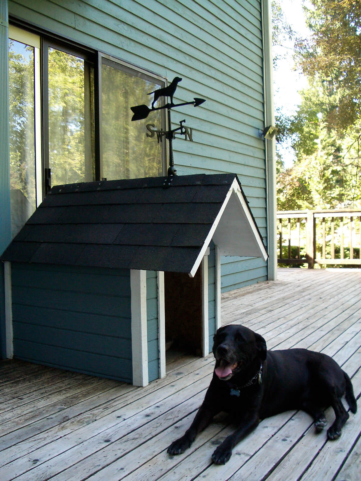 Doggy Door DIY Dog House