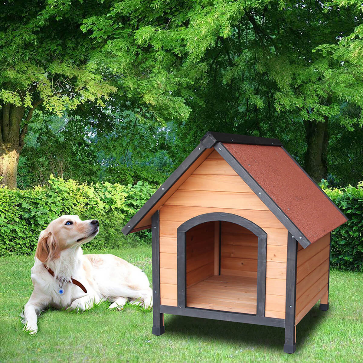 Raised Floor Simple Outdoor Dog House