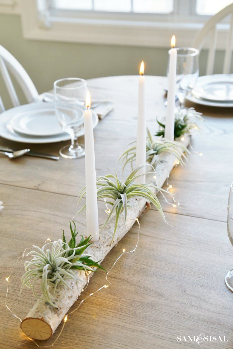 Birch Log Centerpiece with Plants and Succulents