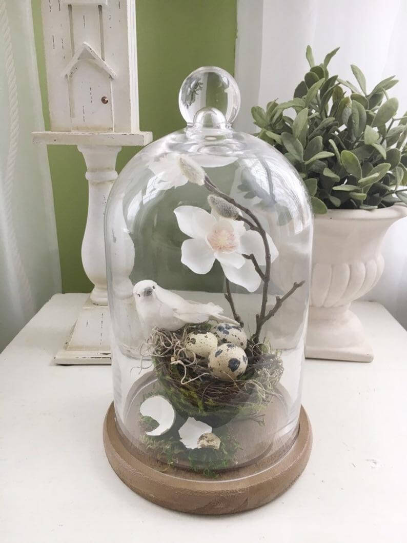 Glass Dome Cloche with Wooden Base Bird Nest Display