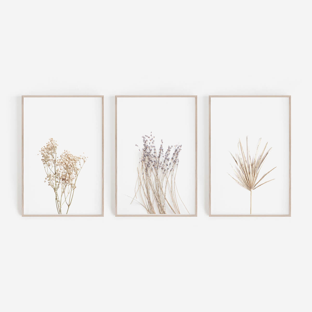 Baby's Breath and Wildflower Collection of Vintage Shabby Chic Prints